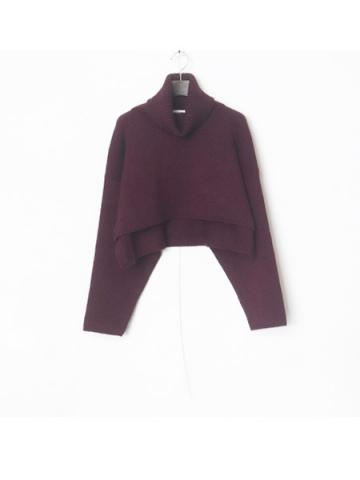 high neck short knit (PLE)